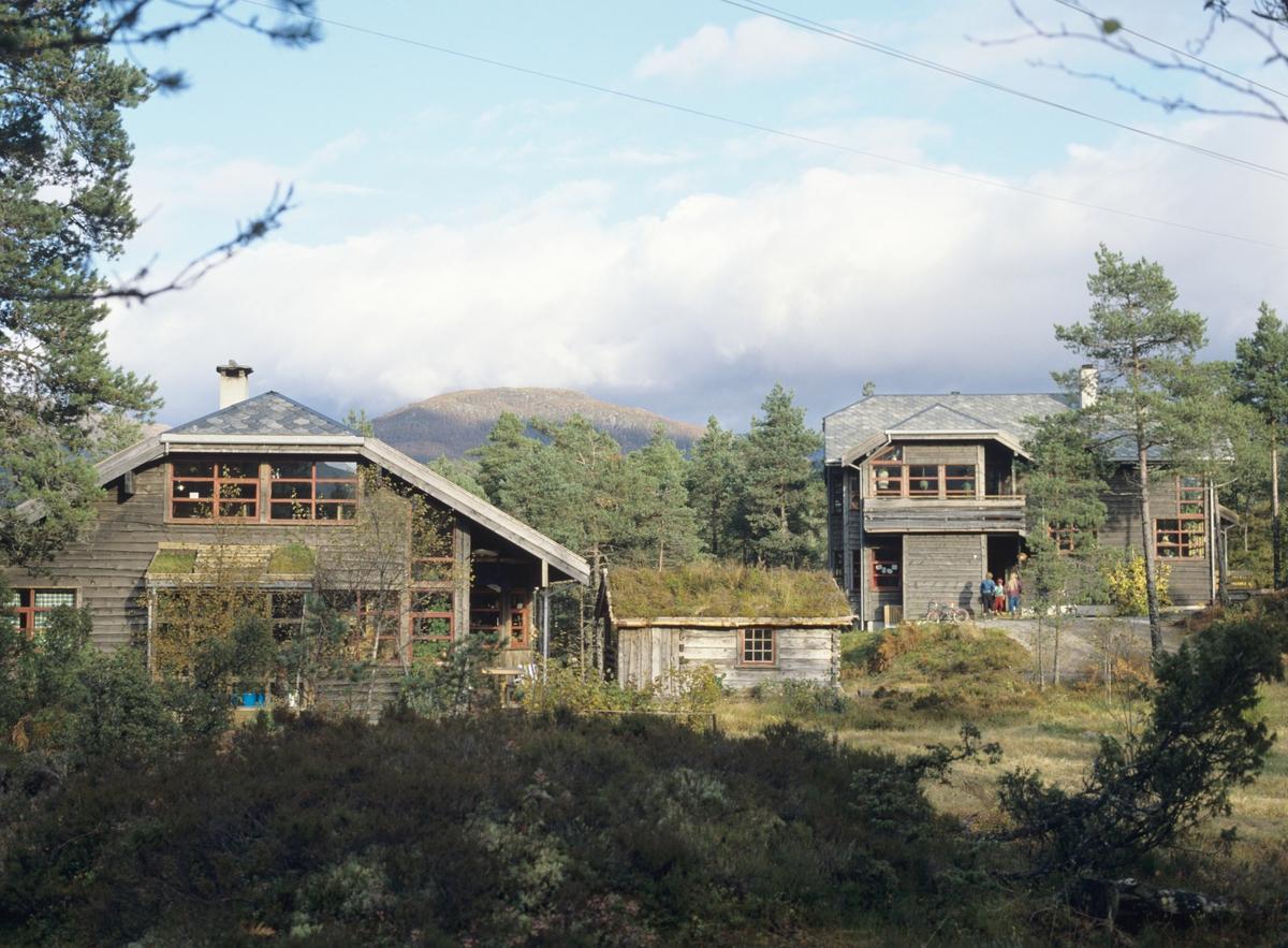 To hus og et gjestehus som ligger vakkert i terrenget i Naustdal ved Førde. llustrasjonsbilde fra Bonytt 1986.