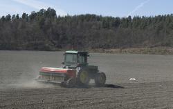 Serie av bilder av såing av korn på Kongsgården.