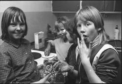 Storuman 1982. Ungdomsgård.