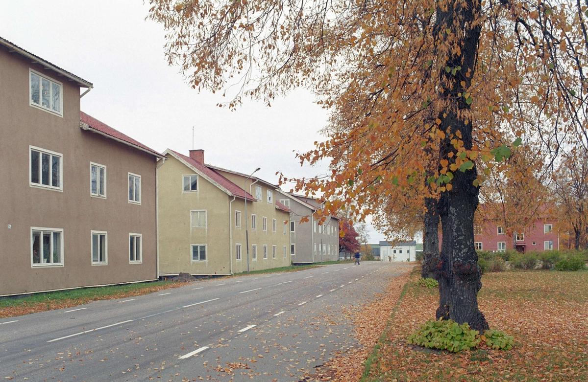 Tallmons sjukhem, Skutskr, lvkarleby socken, Uppland 1962