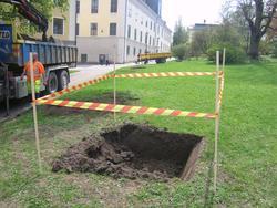 Arkeologisk schaktningsövervakning, Universitetsparken, Uppsala 2010