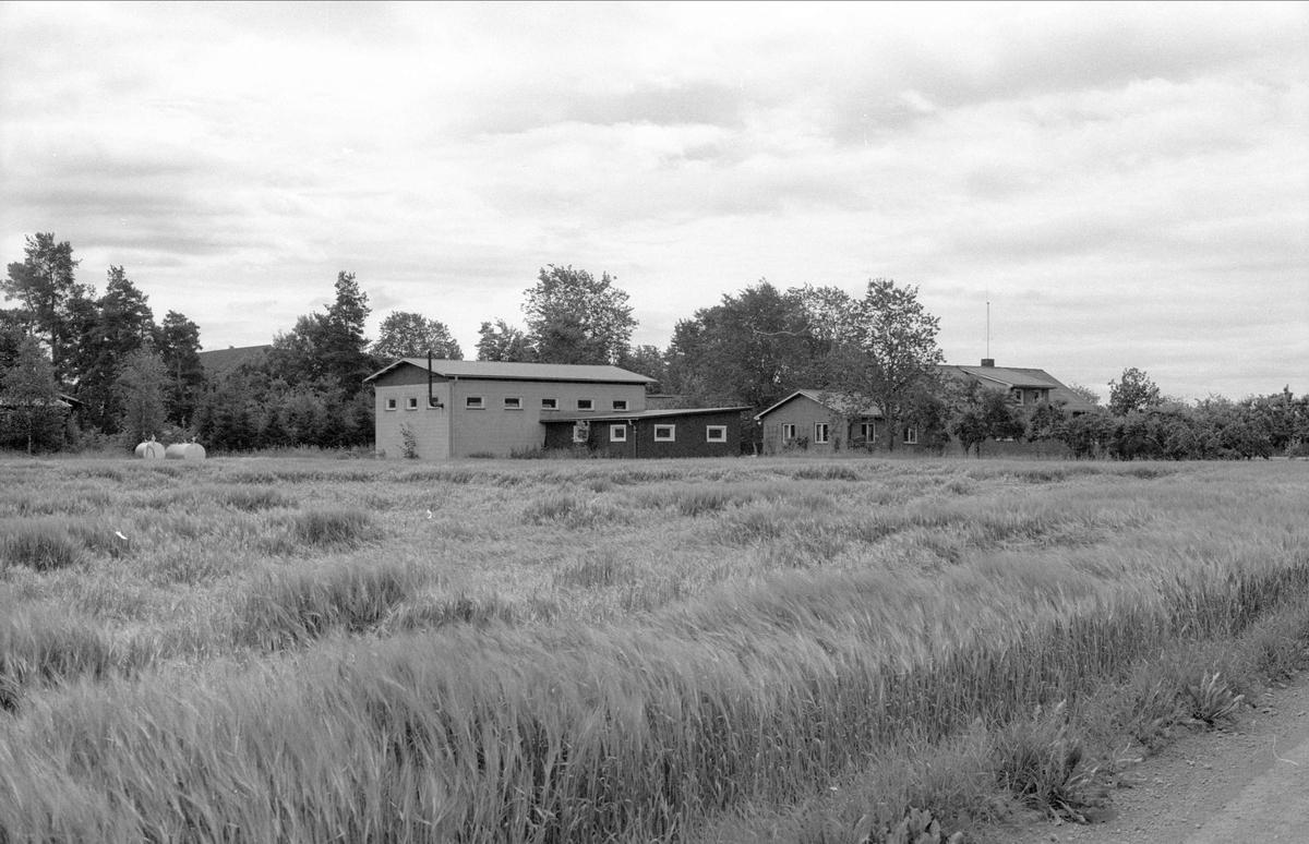 Vy över Broby 2:1, Börje socken, Uppland 1983