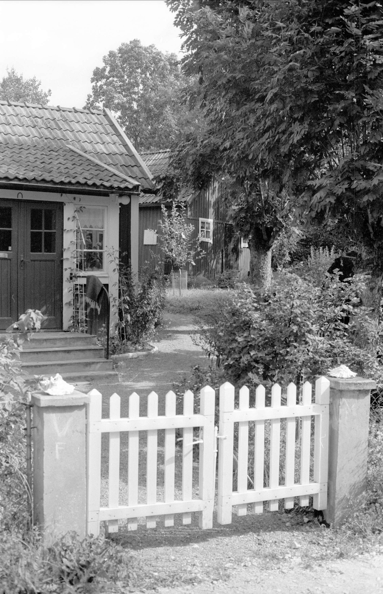 Bostadshus och uthus, Lockstaberg, Locksta 2:5, Locksta, Funbo socken, Uppland 1982
