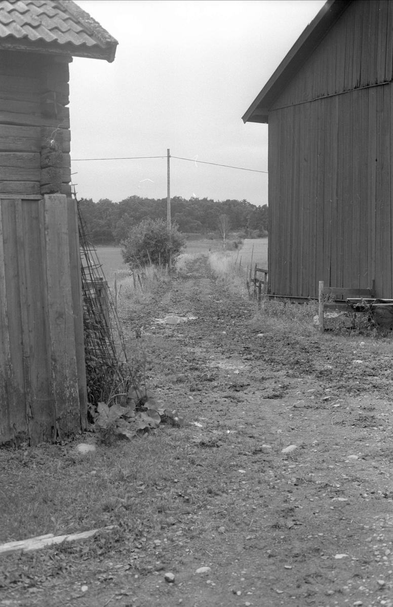 Fägata, Åkerby 1:4, Åkerby, Funbo socken, Uppland 1982