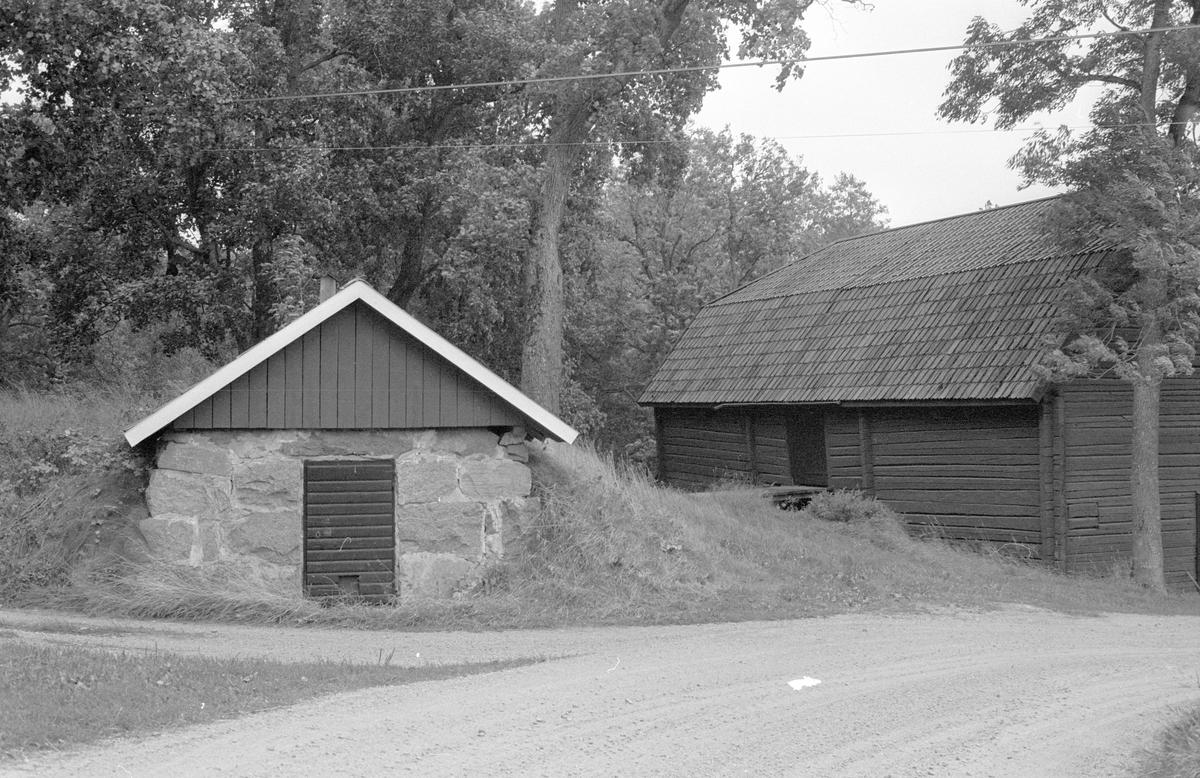 Källare, Marielunds gård, Marielund, Funbo socken, Uppland 1982
