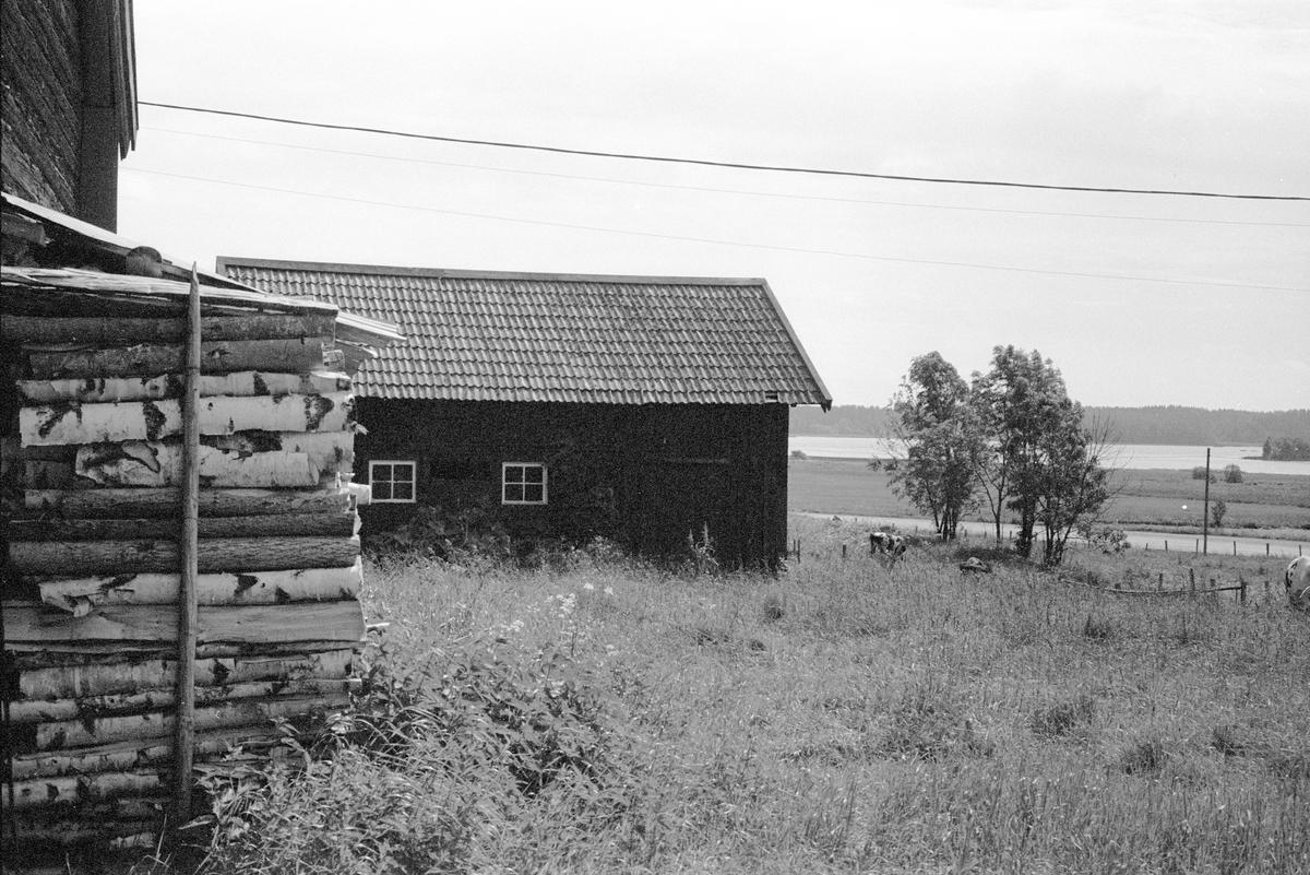 Svinhus, Burvik 3:9, Burvik, Knutby socken, Uppland 1987