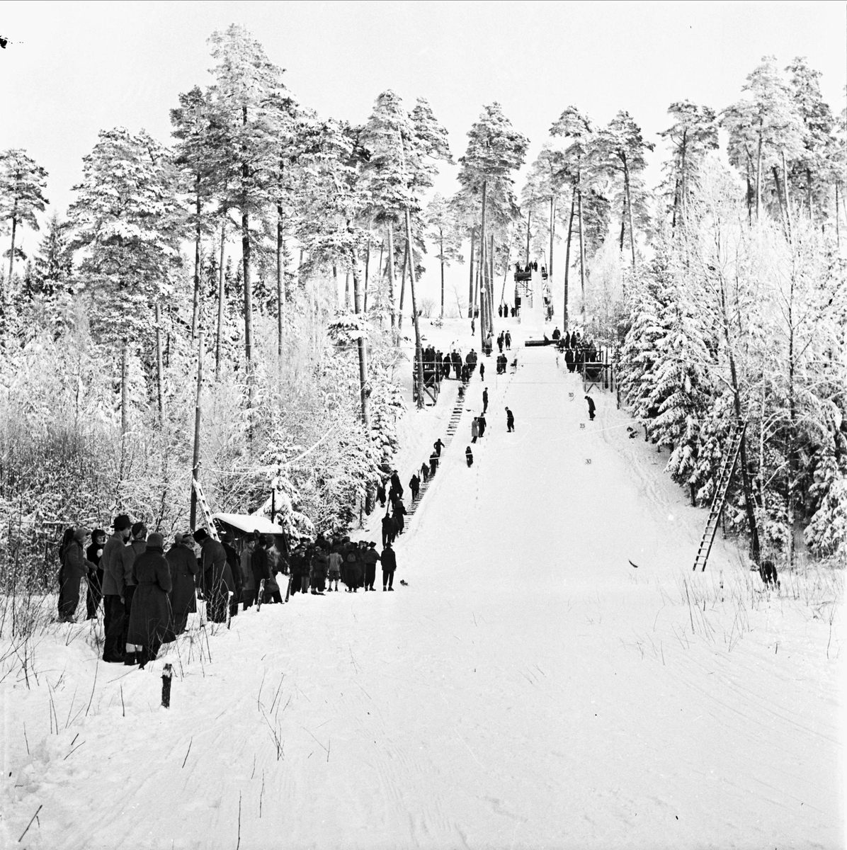 Backhoppning i Sunnerstabacken, Uppsala februari 1954