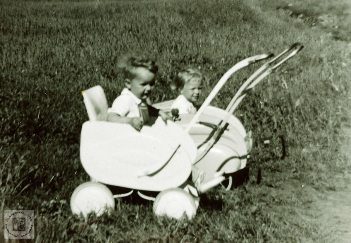Naboer i barnevogn på Sveindal. Grindheim.