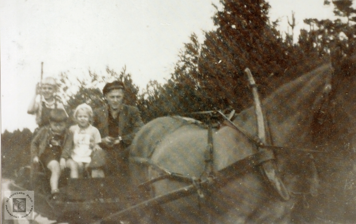 Bjelland & Grindheim Sparebank forflytta med hest og vogn.