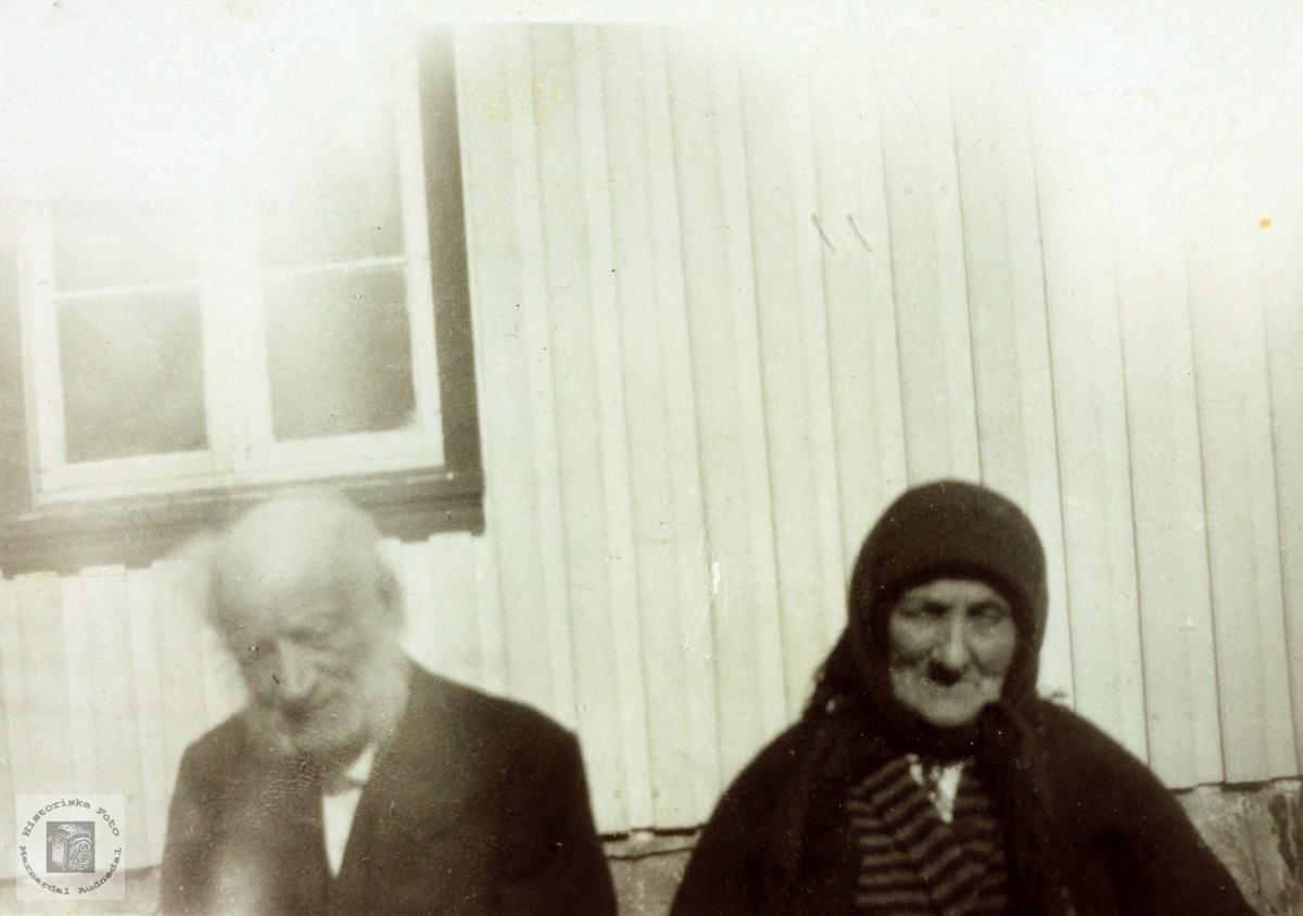 Portrett av Fredrik og Ingeborg Gaulevik. Grindheim Audnedal.