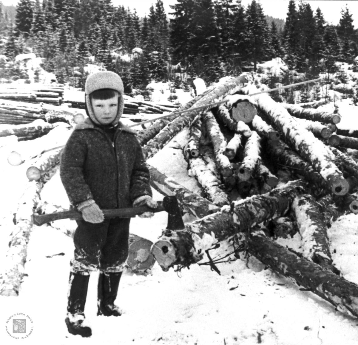 Arne Roland hogger ved på Monan i Bjelland.