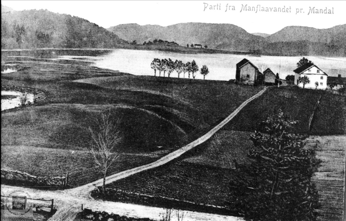 Postkort fra Neset, Laudal og Haukeneset i Bjelland.