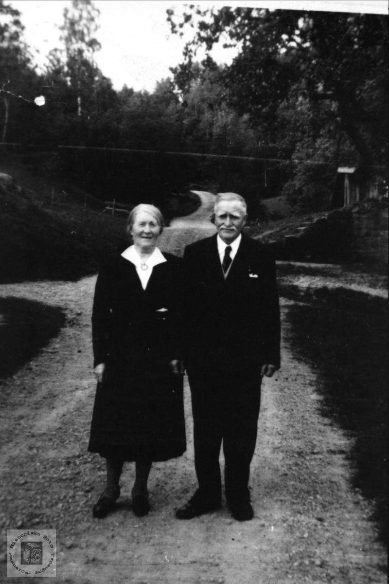 Gullbrudeparet Anne Bertine og Stian Høyland, Øyslebø.
