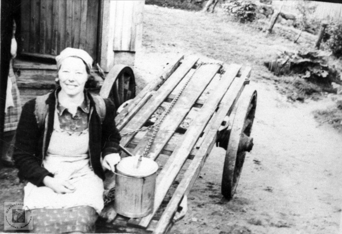 Budeie Anne Tomine Skaar. Øyslebø.