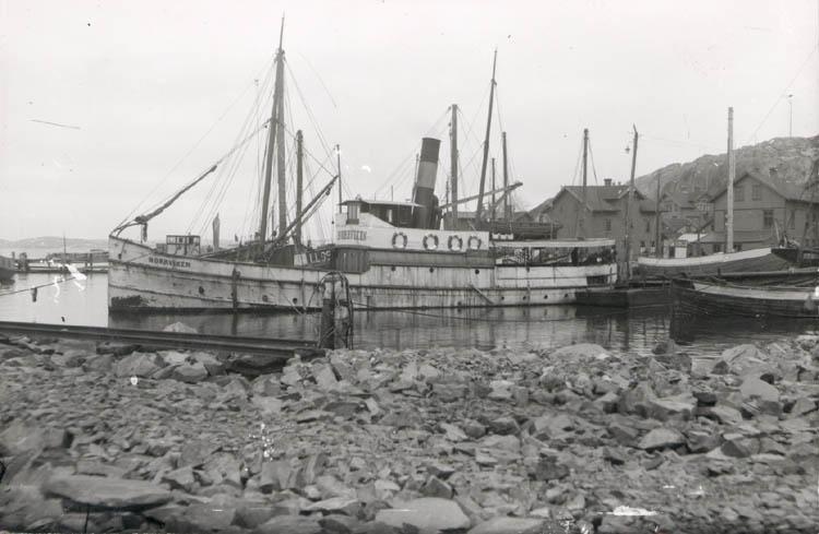 """Noterat på kortet: """"Lysekil. Pass. båten Norrviken i Lysekils norra hamn."""" """"Foto 1920. Köpt av D. Samuelson. Dec. 1958."""""""