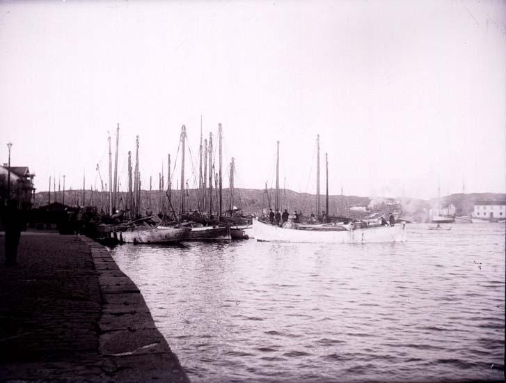 """Enligt text som medföljde bilden """"Marstrand kajen Sillbåtar""""."""