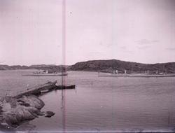 """Enligt text som medföljde bilden: """"Torpedbåtar."""""""