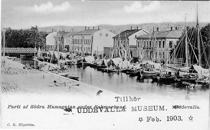"""Tryckt text på vykortets framsida: """"Uddevalla Parti af Södra Hamngatan under fiskmarknad""""."""