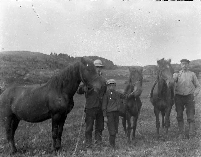 """Enligt notering: """"Tre manspersoner - tre hästar""""."""