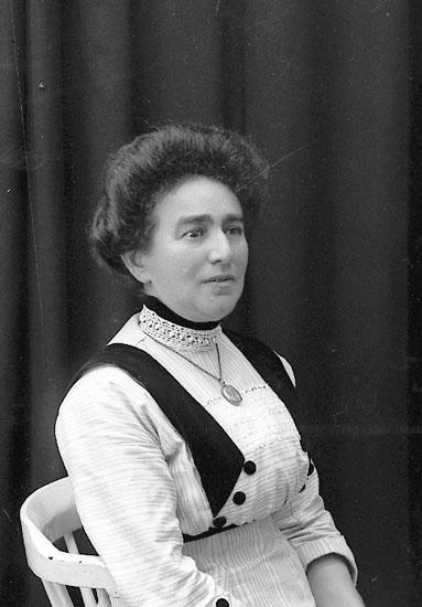 """Enligt fotografens journal Lyckorna 1909-1918: """"Frank, Fru Lyckorna""""."""