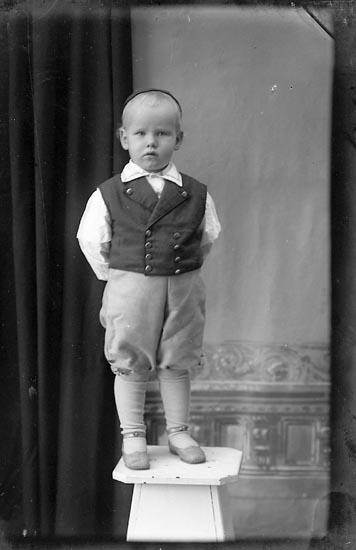 """Enligt fotografens journal Lyckorna 1909-1918: """"Fru Lisa Broms Lyckorna"""". Enligt fotografens notering: """"Tage Broms, Lyckorna""""."""