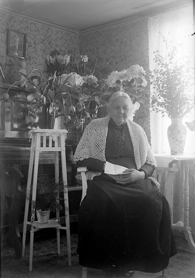 """Enligt fotografens journal nr 5 1923-1929: """"Olsson, Fru Västergård Här""""."""