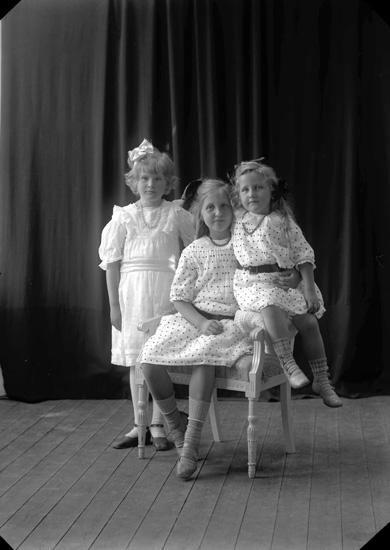 """Enligt fotografens journal nr 2 1909-1915: """"Kindahl, Konsul Villa Talludden Ön""""."""