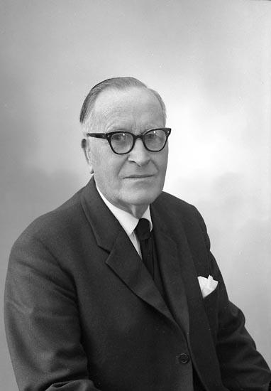 """Enligt fotografens journal nr 9 1958-: """"Palmqvist, Herr Carl Stenung Stenungsund""""."""