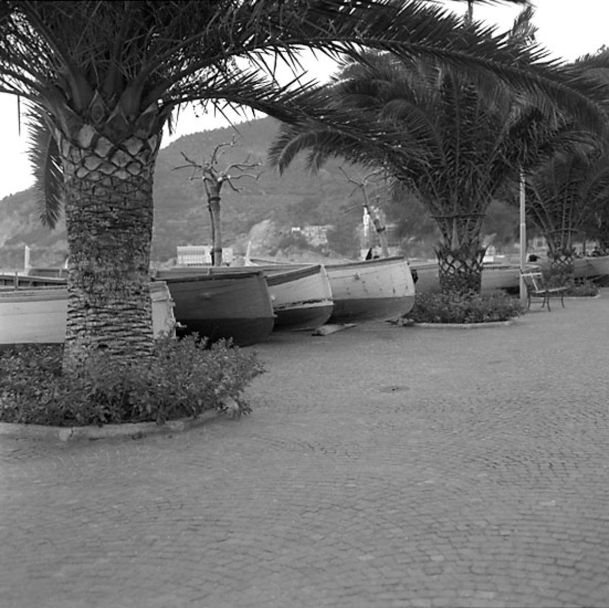 24. Italien. Fotojournal finns på B.M.A. + fotoalbum. Samtidigt förvärv: Böcker och arkivmaterial. Foton tagna mellan 1959-11-04 och 1959-11-05. 12 Bilder i serie.