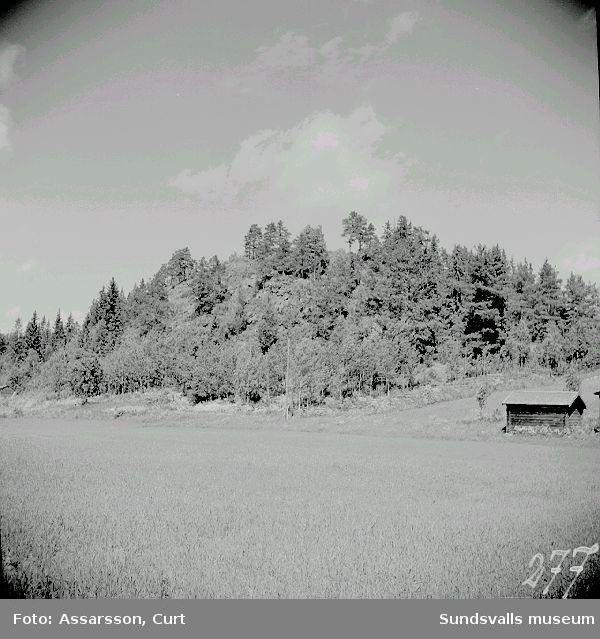 Lundeberget med bygdeborg på toppen.