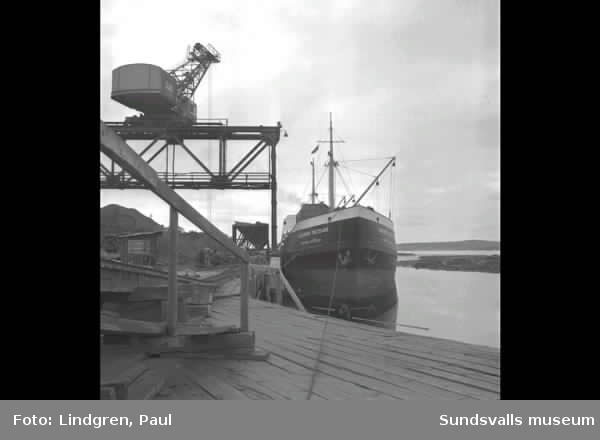 Capitan Gastello. Rysk fartyg i Svartvik.