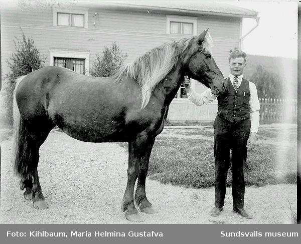 Porträtt. Man på gårdsplan med en häst.