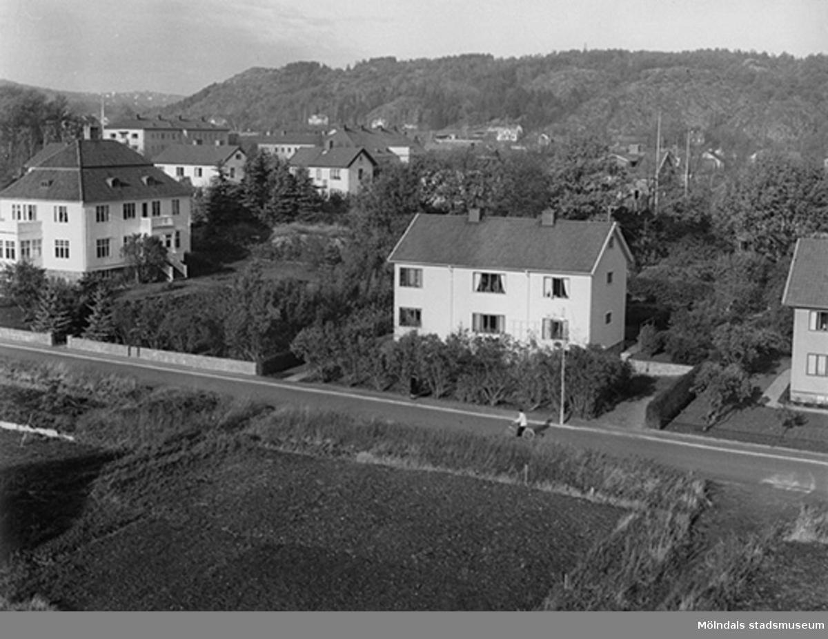 Längst till vänster ses trädgårdsmästare Peterséns villa Annehill på Växthusgatan 16B.