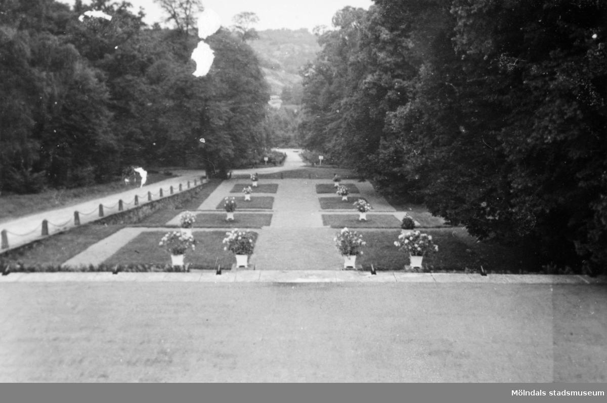 Gunnebo slottspark mot norr, 1939.