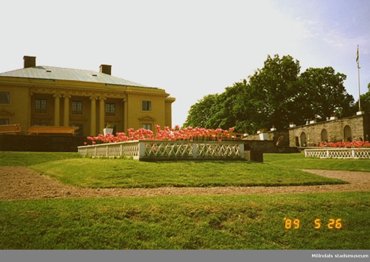 Slottet och parken med prydnadsväxtodling.