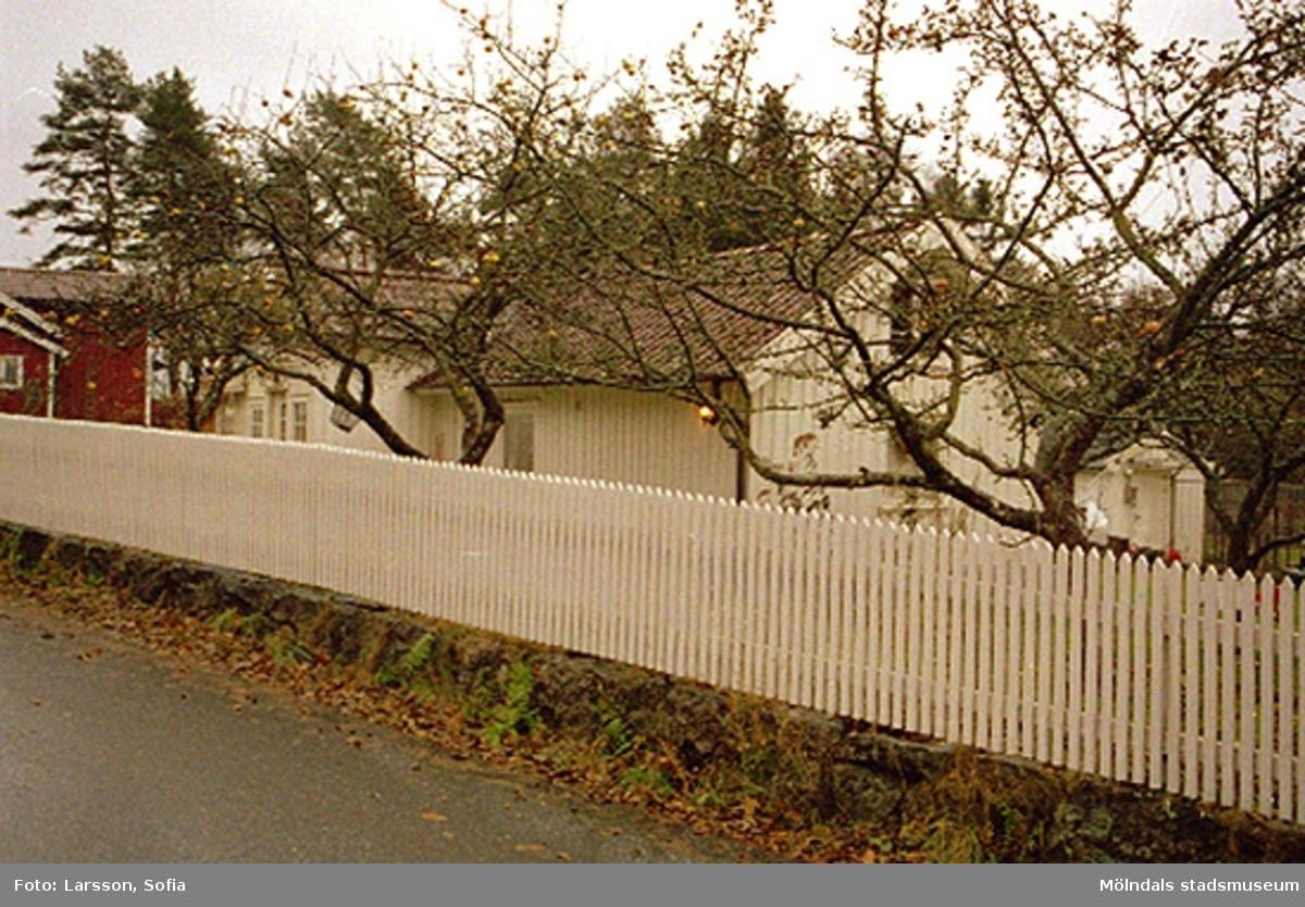Bostadshus med olika ekonomibyggnader omgärdat av vitt staket. Okänt årtal. Relaterat motiv: 2002_1197.