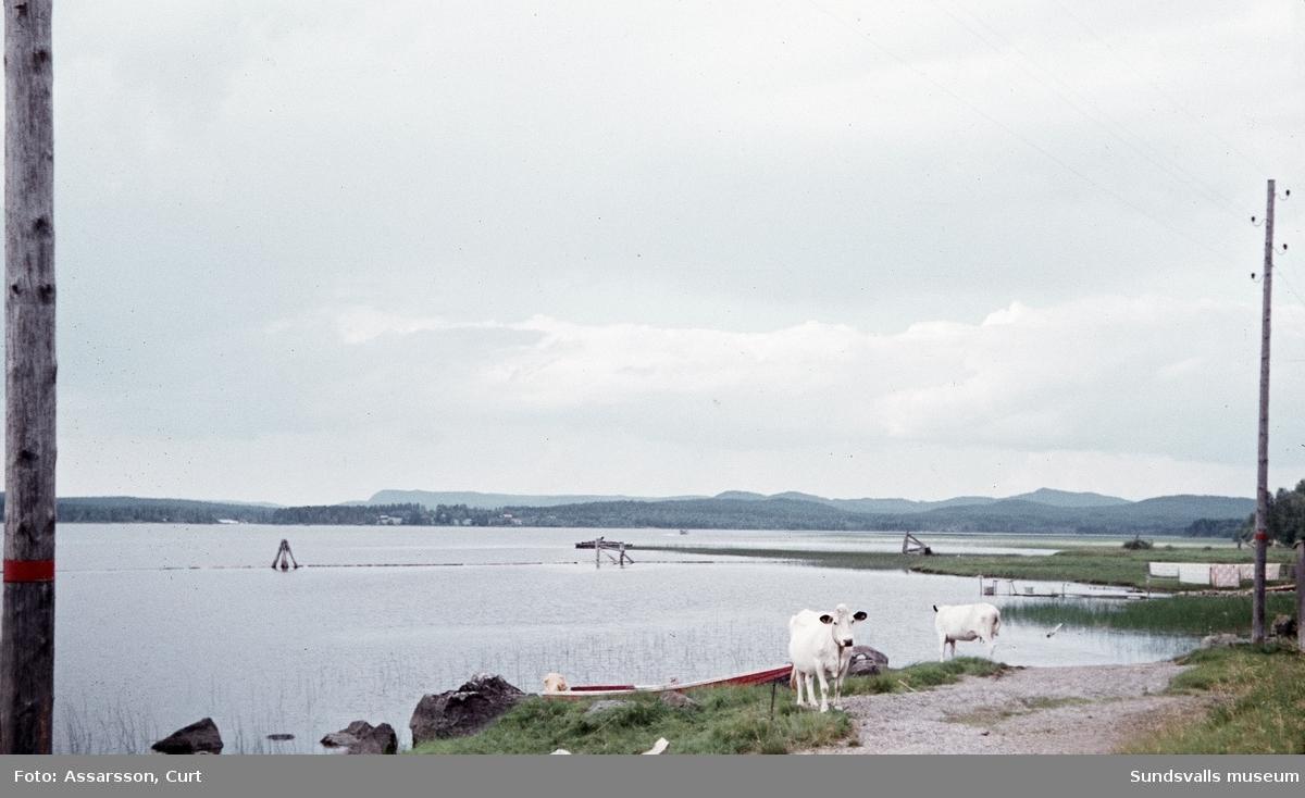 Ytterturingen, vy över Mellansjön.