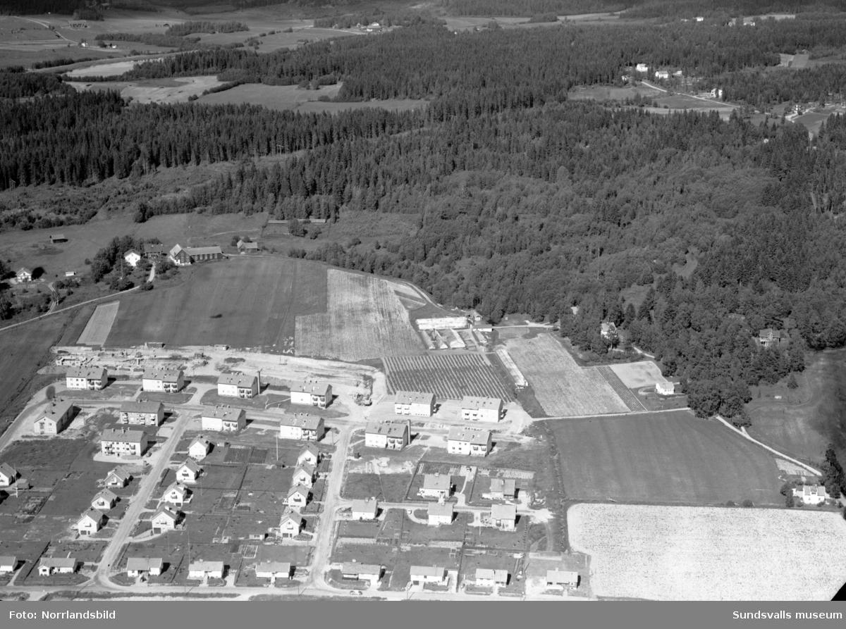 Flygfoto över Högom, Granlo med ny och gammal bebyggelse vid Mjölnervägen, Runstensvägen och Vikingavägen.