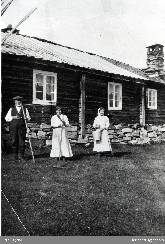 Odd, Kari og Mari Grøthe Biletet er teke på Søre Hjallen, 63.6