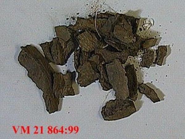 Vad antagande görs i den relativa datering av fossil