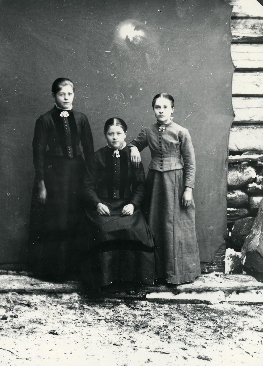 Tre unge jenter, lerretbakgrunn