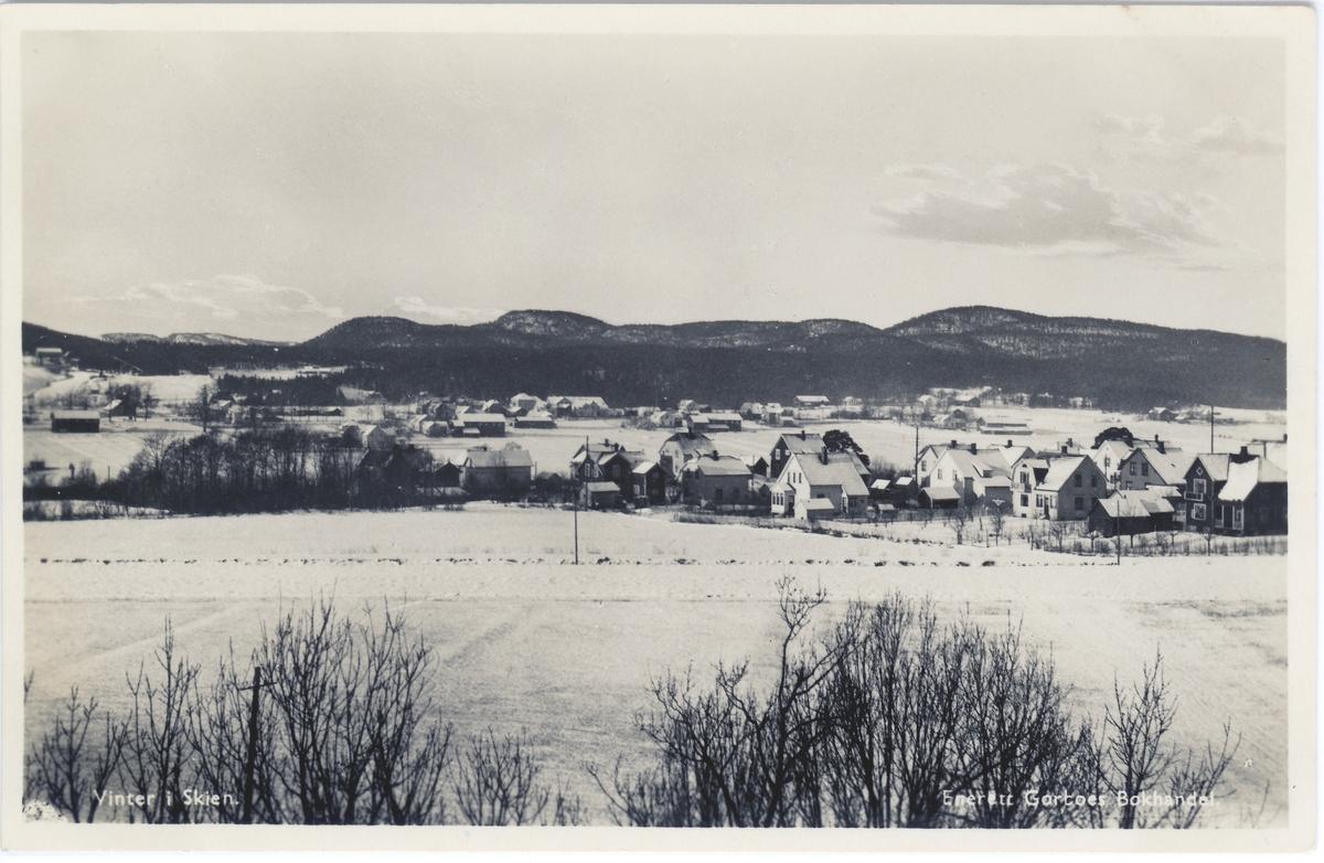 Vinter i Skien.