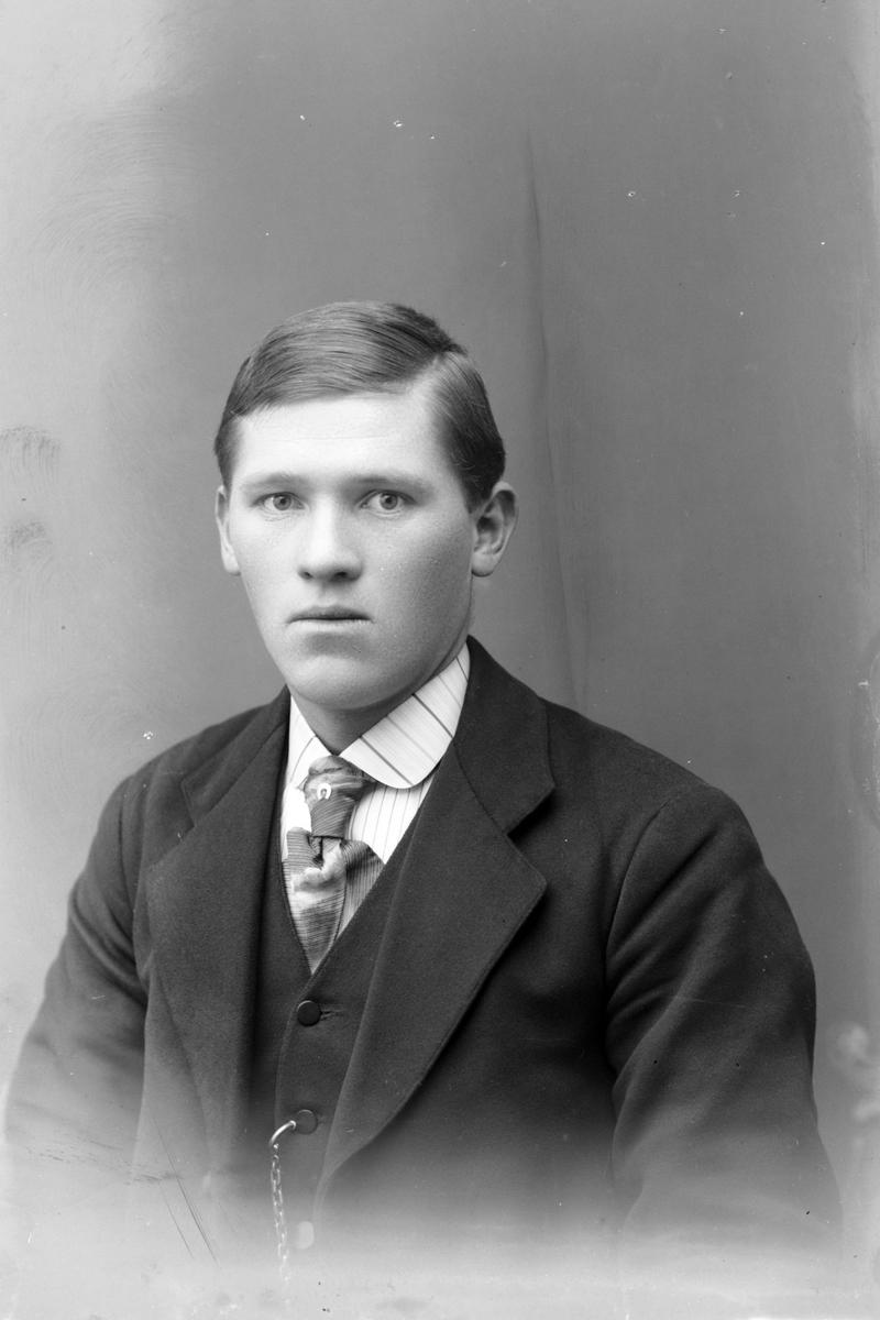 Brystportrett av ung mann.