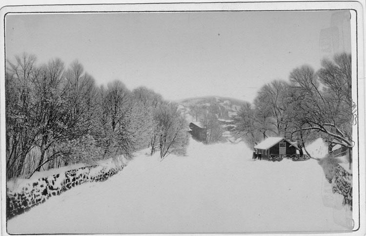 "Enligt text skrivet på kopian: ""Vinterparti fr. Träbron omkr.1880""."