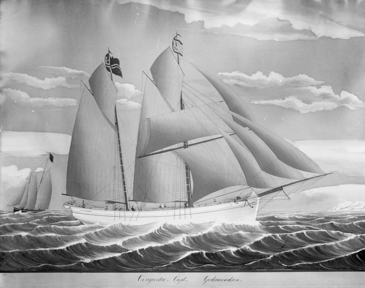 """Avfotografert maleri av galeasen """"Concordia"""" fra Haugesund i åpent farvann. I bagrunnen seiler et annet skip."""