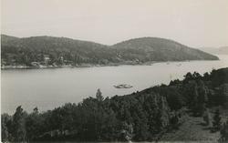 """Enligt Bengt Lundins noteringar: """"Ulvesund från Restenäs ö""""."""