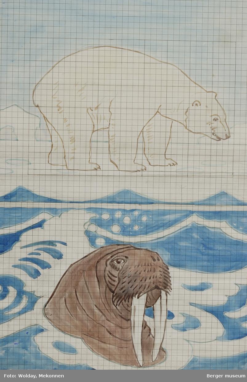 Isbjørn med hvalrossbord. Hele teppet.