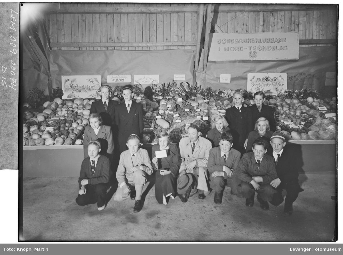 Jordbruksklubben som fikk gullmedalje markert i regi av 4H