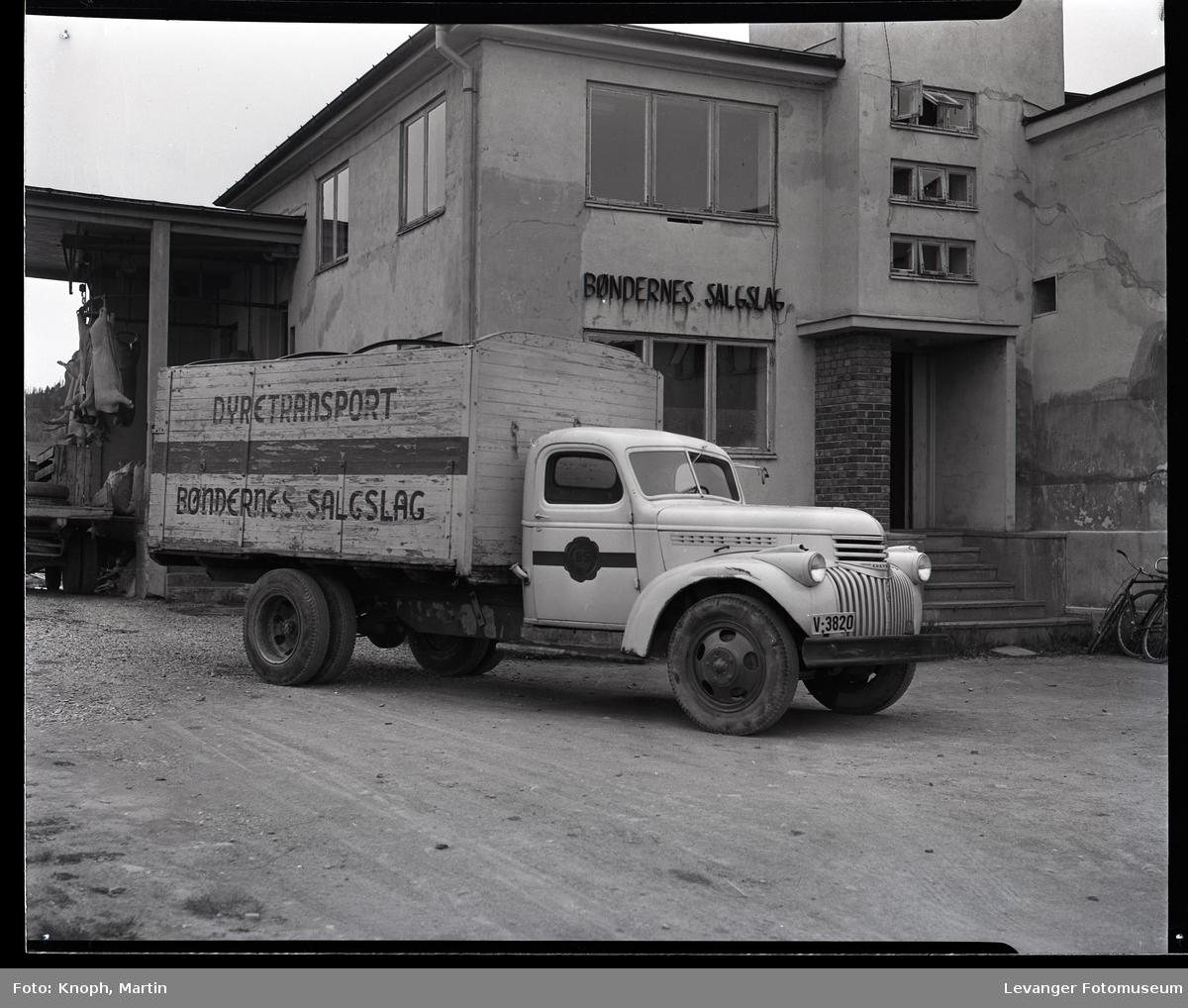 Slakthuset og dyretransport, Chevrolet 1946-47.