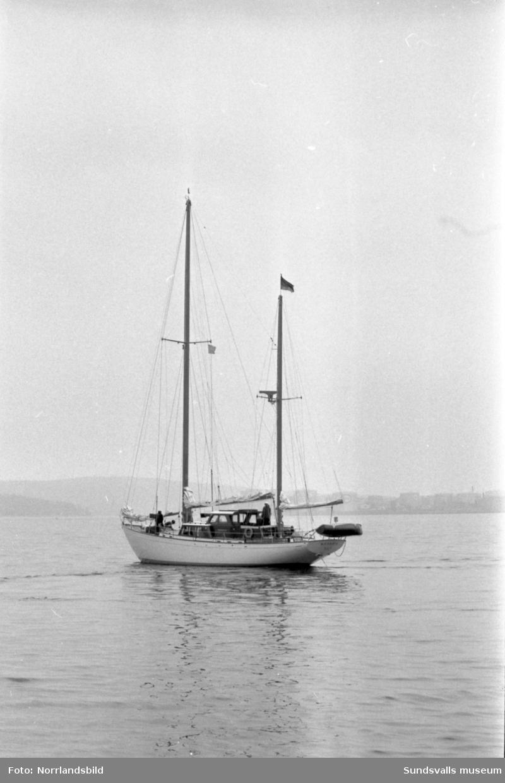 Båtar i Sundsvalls hamn. Bavaria.